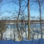 Fresh Pond 2-10-13